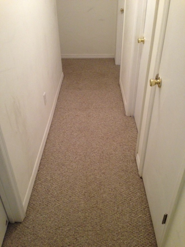 carpet cleaning results hallway after