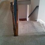 dark carpet stains after