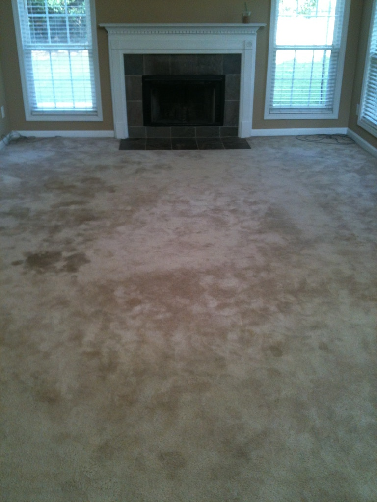family-room-carpet-cleaning-01-before