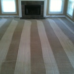 family-room-carpet-cleaning-02-after