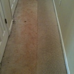 hallway-carpet-cleaning-before-after