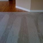 living room carpet after