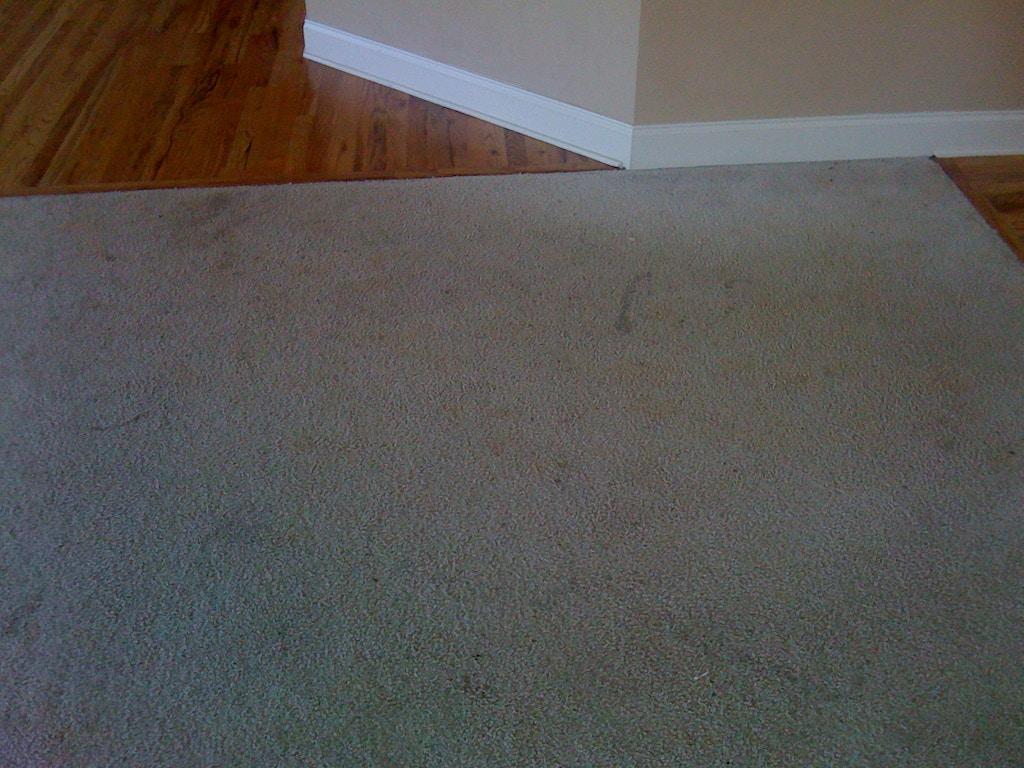 living room carpet before