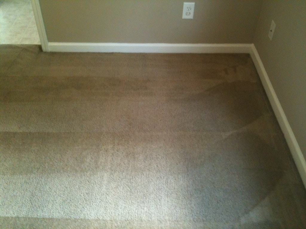 moldy carpet after cleaning