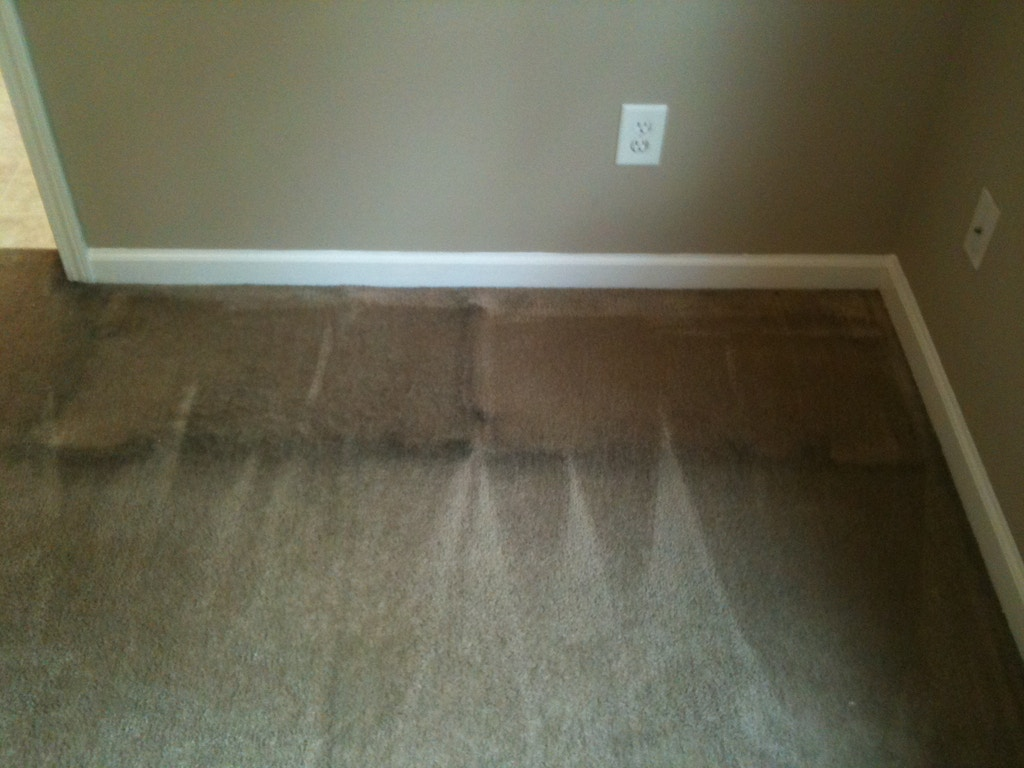moldy carpet before cleaning