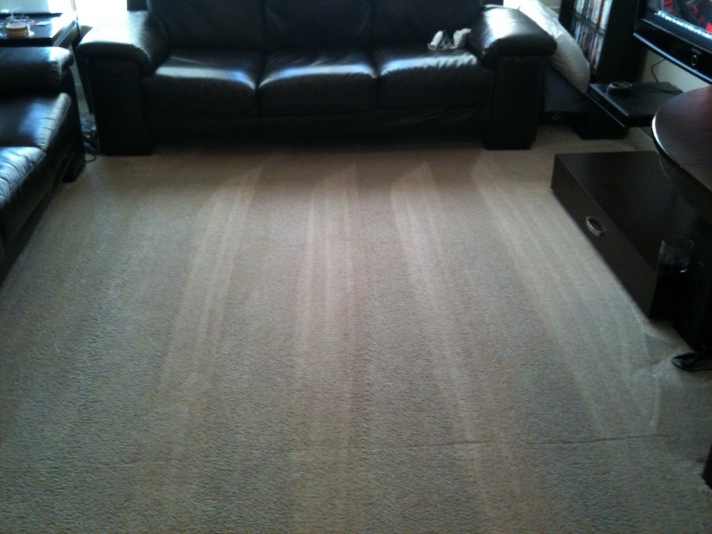 pet-stains-carpet-cleaning-02-after