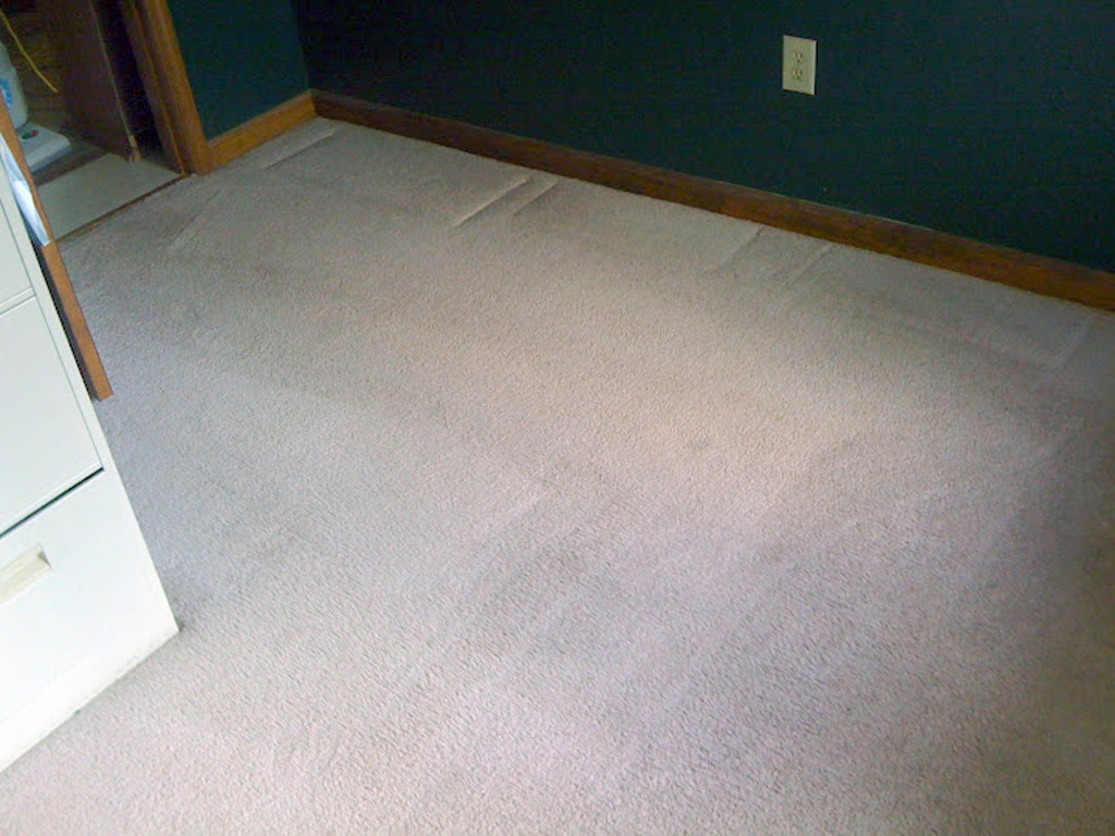 stained basement carpet after