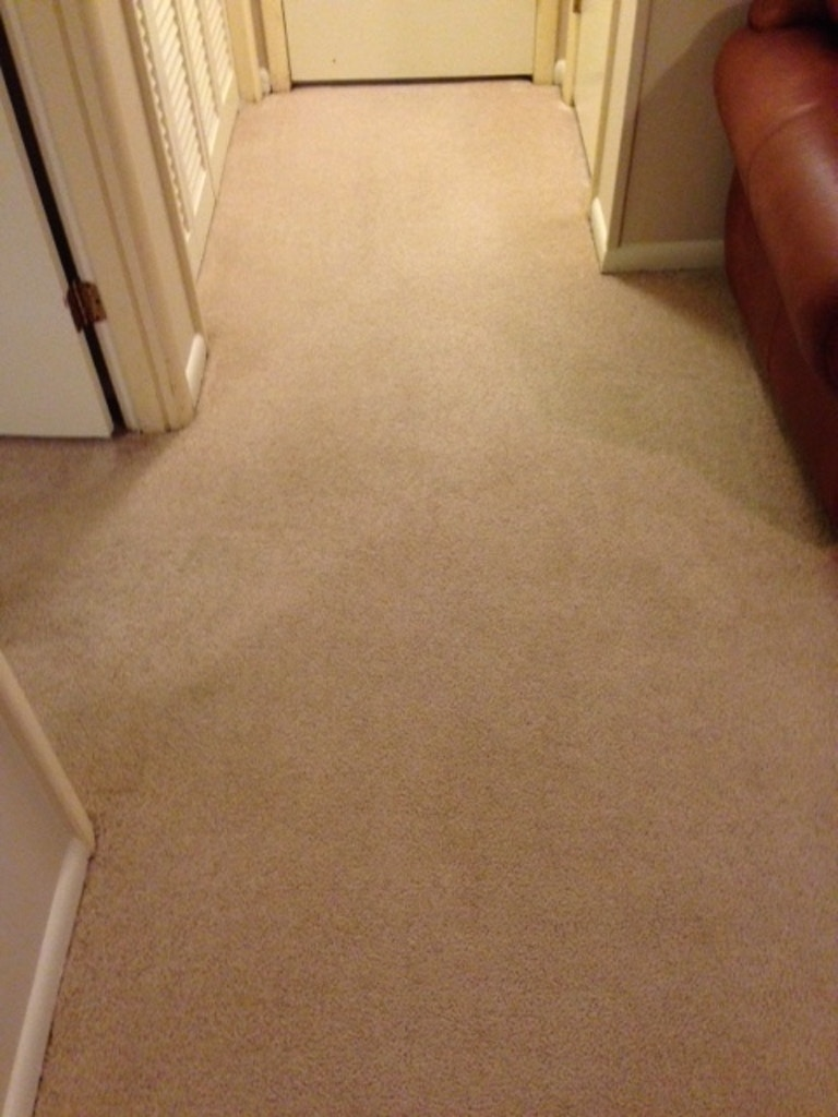 after-carpet-cleaning-1-athens-ga