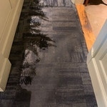 carpet-cleaning-hall-before-athens-ga