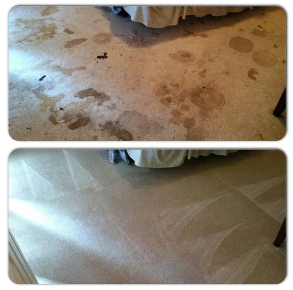 carpet-stain-removal-athens-ga