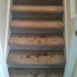 stairs-carpet-cleaning-01-before