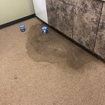 water-stain-before-carpet-cleaning-athens-ga